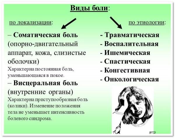 классификация видов боли