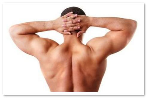 Мышцы спины функции