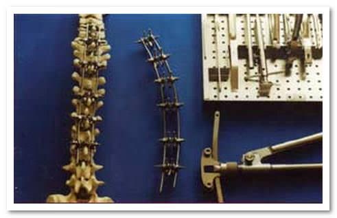 Шейный отдел спинного мозга функции