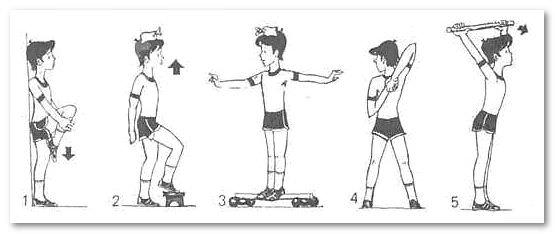 упражнения от сутулости у детей