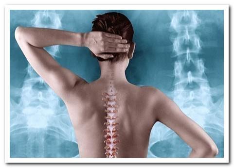 выбор врача при боли в спине
