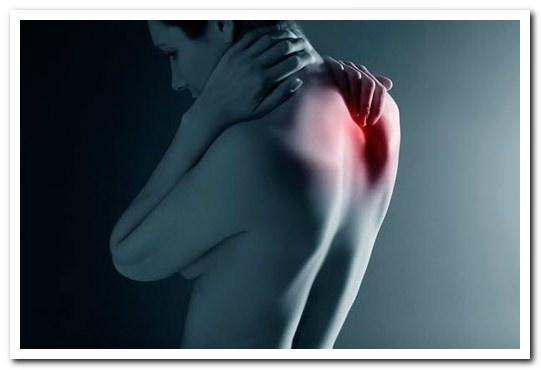 Почему болит грудной отдел позвоночника?