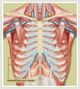 межреберная невралгия при грудном остеохондрозе