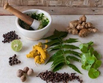 Лечение остеохондроза народными средствами самые эффективные