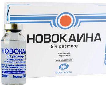 Обезболивающие препараты при остеохондрозе: обзор средств