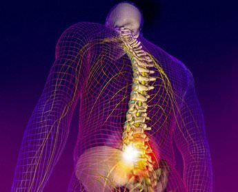 Радикулит пояснично крестцовый симптомы лечение Суставы