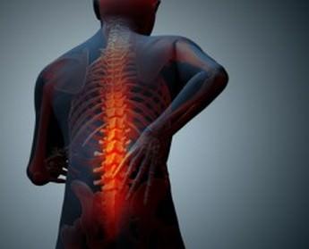 Виды симптомы и лечение спондилита