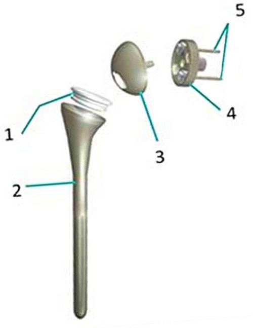 Комплекс упражнений для восстановления связок плеча