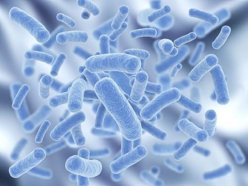 Поражение суставов бактериями