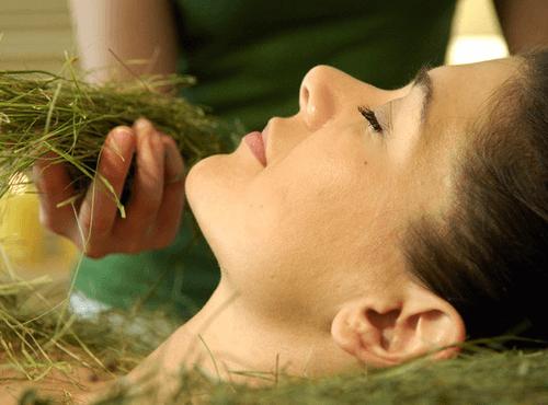 средство от ревматизма из сенной трухи