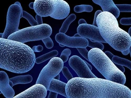 антибиотики не помогают при гриппе