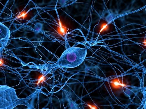 восстановление связей между нейронами