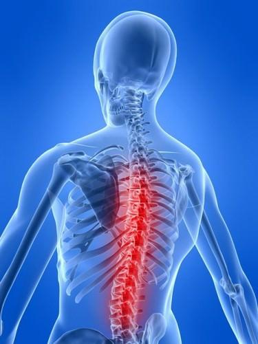 реабилитация позвоночника и суставов