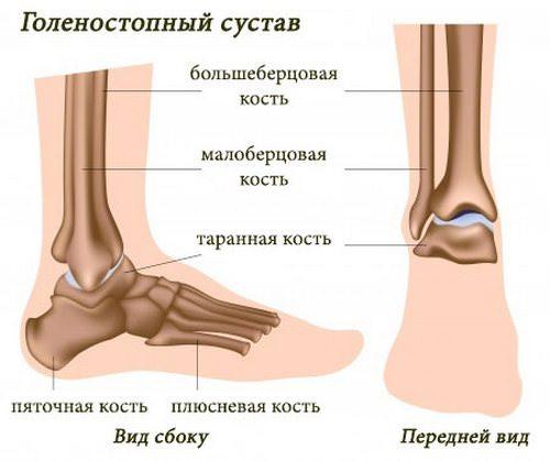 Синовит голеностопных суставов лечение эндопротез коленного сустава