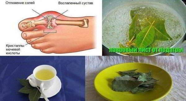 lavrovii-list4