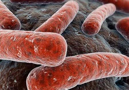 Как передается туберкулез костей. Как можно заразиться туберкулезом? Как передается туберкулез от человека к человеку?
