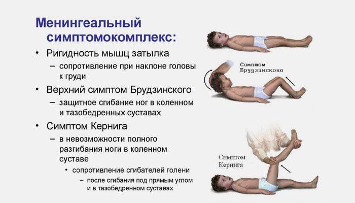 ортез на коленный сустав германия